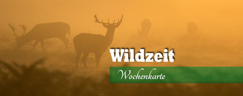 Pozi´s Wildzeit